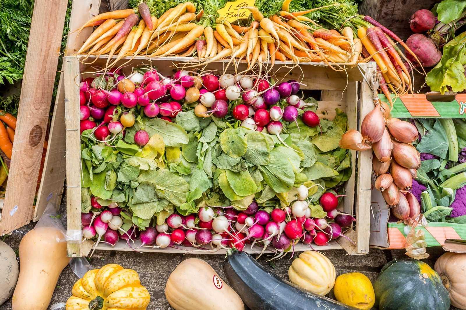 Il veganesimo, uno stile di vita a 360 gradi